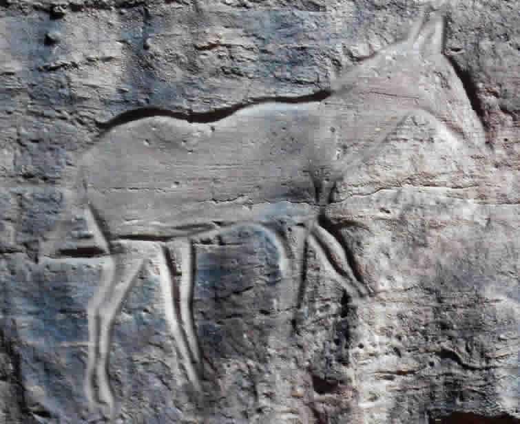 Prehistoric animal engraving