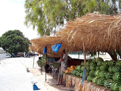 watermelon market by the edge of the road
