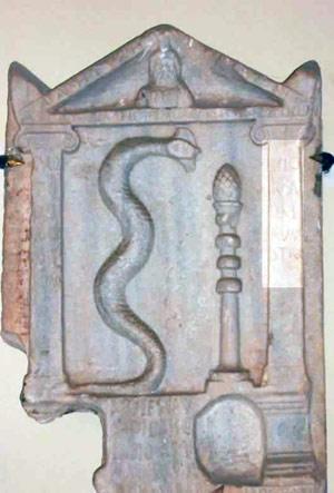 a stelea of a snake