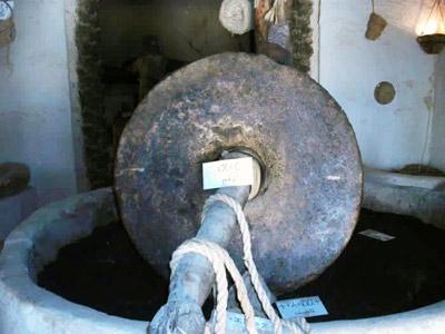 the oil press