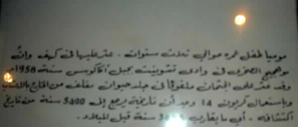 the sign below the mummy in the museum, in Arabic