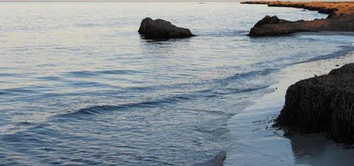 Tawsent, a beach area rich in seaweed in Zuwarah