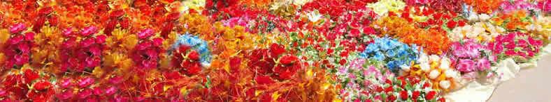 flowers from libyan market