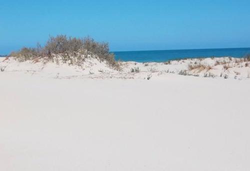 the island of Farwah