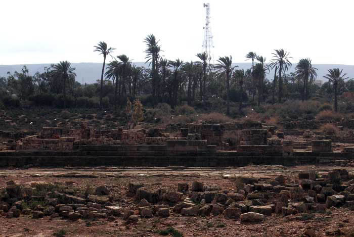 Tokra: a scene of palm trees with archaeological remains in the foreground