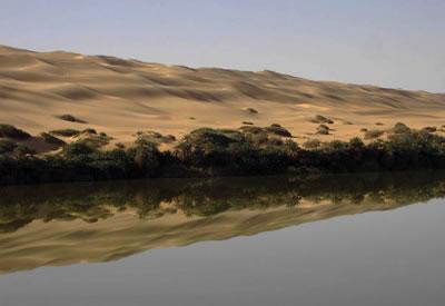 Desert Lake Reflections