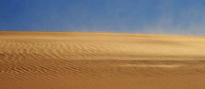 sahara wind