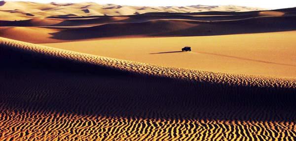 Sahara golden colour sand dunes