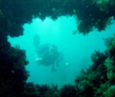tiboda underwater