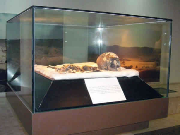 the mummy in a display glass box