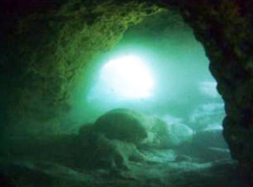 tibuda underwater arches