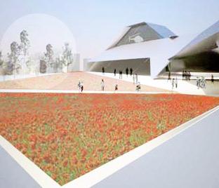 poppy field outside the museum