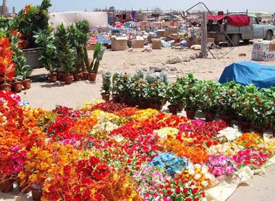 flower market in Libya