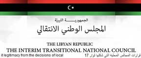 transitional national council website