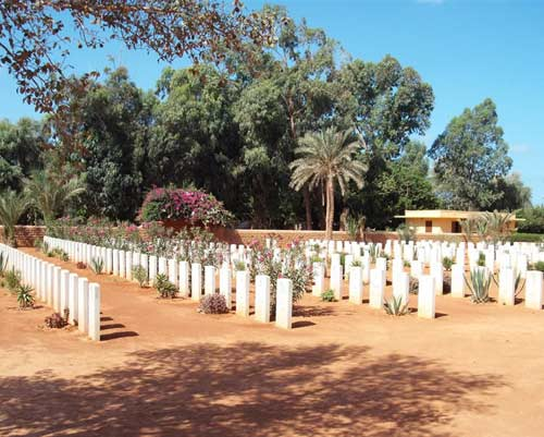 graves from Benghazi war cemetery, with lots of trees in the background