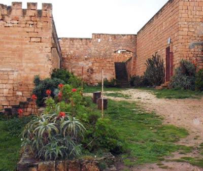 Qaser Libya garden view