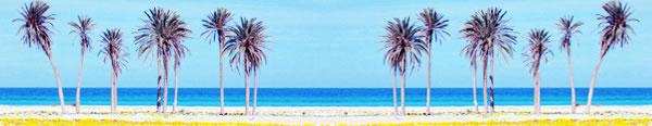 zuwarah (Zuwara) beach palms, Libya.