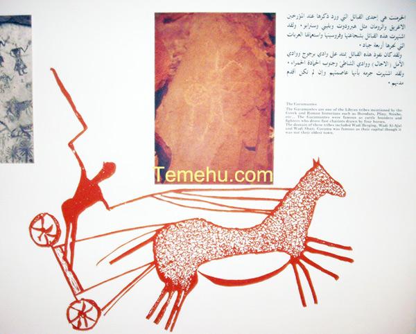 chariots in assaraya alhamra museum in Tripoli